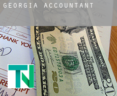 Georgia  accountants