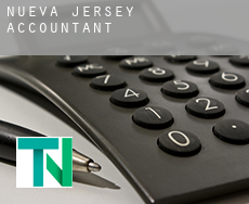 New Jersey  accountants