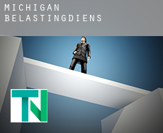 Michigan  belastingdienst