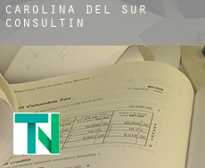 South Carolina  consulting