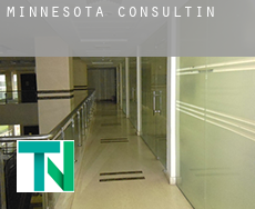 Minnesota  consulting